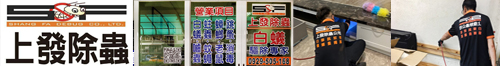 高雄專業除白蟻,消毒除蟲,上發除蟲有限公司 - 台灣新聞日報