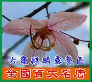 高雄-六龜麒麟露營區