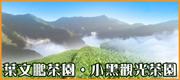 葉文鵬茶園 • 小黑觀光茶園 •  新北好茶