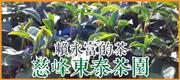 慈峰賴永富的茶 • 慈峰東泰茶園 • 100位米其林主廚推薦的台灣好茶