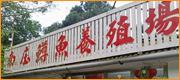 南庄鱒魚養殖場