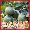 三太子果園 • 埔里百香果