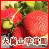 大崗山草莓園