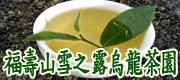 梨山聚鑫茶廠 • 福壽雪泉茶園 • 福壽山雪之露烏龍茶園